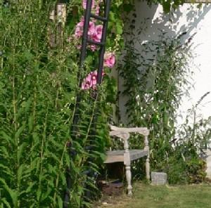 Rückzug im Garten
